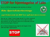 STOP for alle laks på RSF fiskevand..
