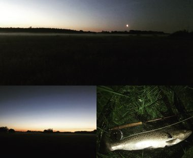 Stadig fint fiskeri trods lav vandstand..