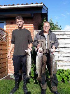 Martin Andersen<br /> Havørred 65 cm 3 kg. Tommy Andersen havørred på 72 cm og 5 kg<br /> samt en Havørred på 64 cm og 3 kg