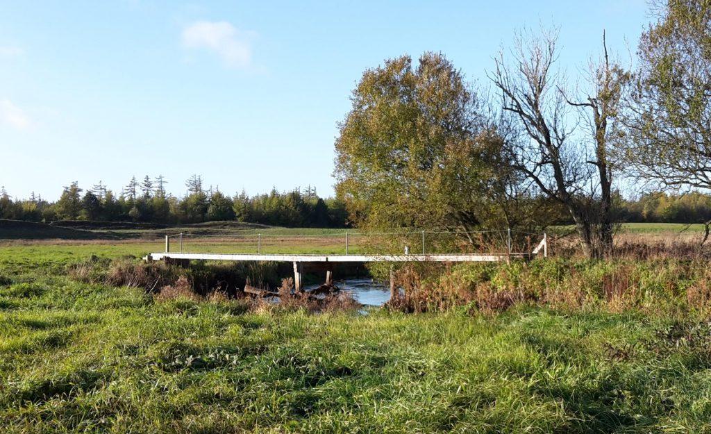 Ødegårds broen, hvor det kan ses at træet spærre 3/4 af vandløbet og vandpresset ville blive endnu større ved højere vandstand