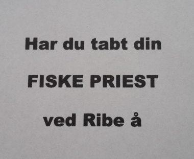 Fiske priest – fundet ved Ribe å
