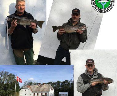 Havørred fiskekonkurrence 2019
