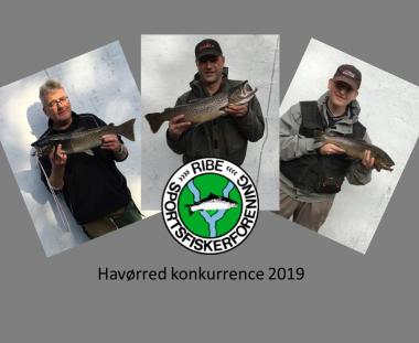 Afslutning på HAVØRRED FISKEKONKURRENCE
