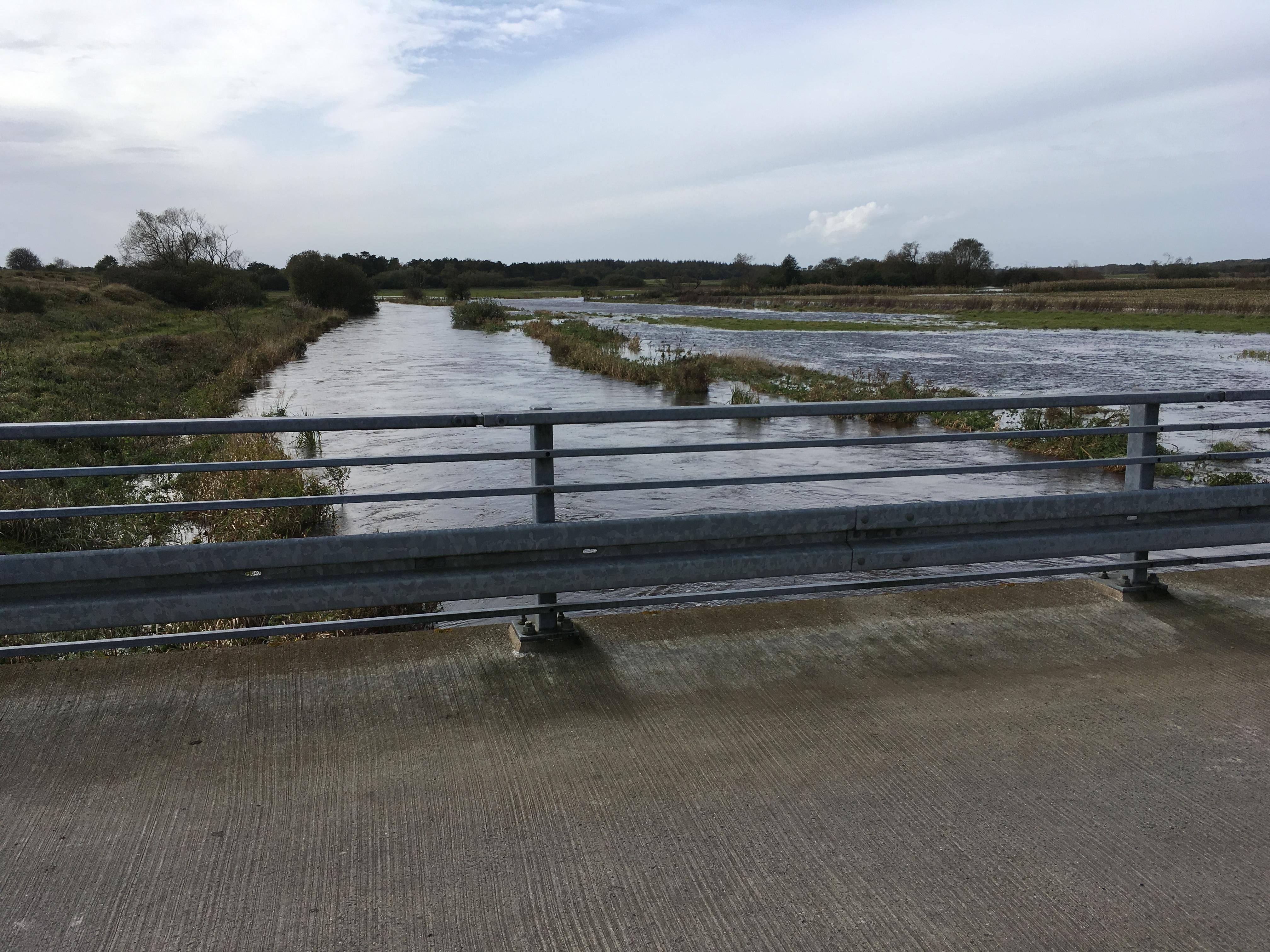 Flads å nedstrøms Harreby bro