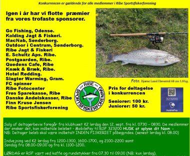 HAVØRRED fiskekonkurrence
